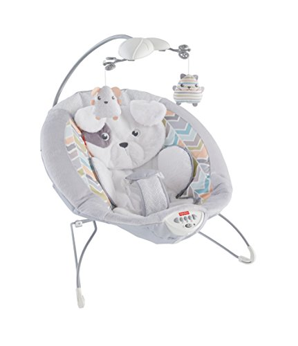 Fisher Price Little Snugapuppy Deluxe Bouncer