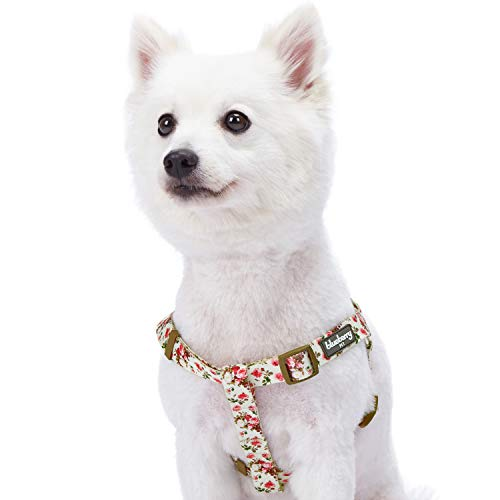 Blueberry Pet Step-in Spring Scent Inspired Pink Rose Print Ivory Dog Harness, Chest Girth 20