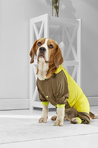 Leg Italian (Medium Dog Raincoat For Beagle Italian Greyhound Cocker Spaniel Border Collie (Small Medium Size, yellow, khaki))