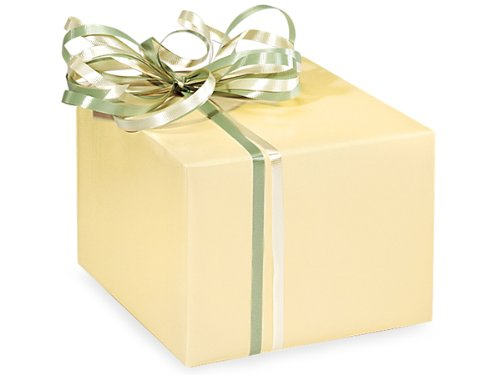 Ivory Gloss Gift Wrap Roll