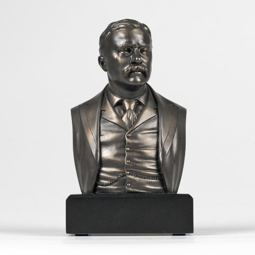 (Theodore Roosevelt Bust)