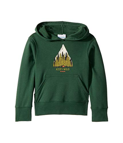 Columbia Kids Boy's Take A Hike¿ Hoodie (Little Kids/Big Kids) Forest X-Small