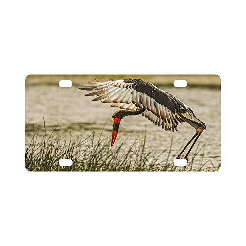 Stork Billed Saddle - Saddle Billed Stork Pattern Classic Metal License Plate Auto Car Tag 12