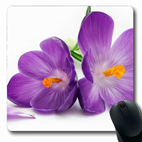 Ahawoso Mousepads Crocus Isolated On White Oblong Shape 7.9 x 9.5 Inches Oblong Gaming Mouse Pad Non-Slip Rubber Mat ()