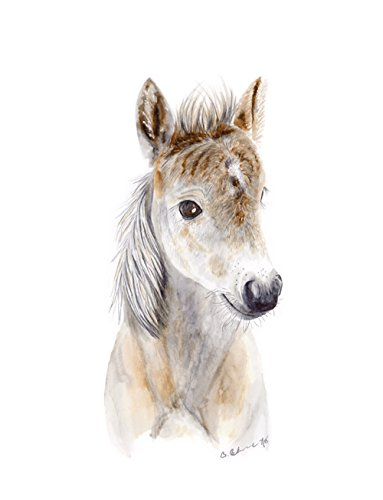 Baby Horse Foal Brown White Watercolor Nursery Wall Art Decor Available In Various Sizes (White Farm Horse)