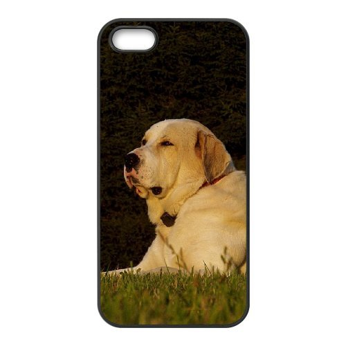 SYYCH Phone case Of Sensitive Shepherd Cover Case For iPhone 5,5S