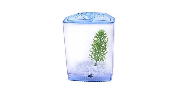 Amazon.com : eDealMax pecera acuario de plástico Mini tanque de ...