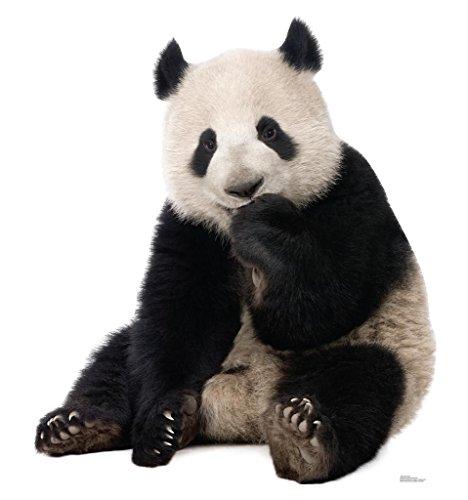 - Giant Panda - Advanced Graphics Life Size Cardboard Standup