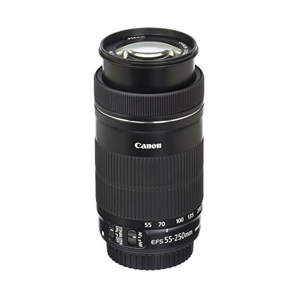 RetinaPix Canon EF-S 55-250mm F4-5.6 is STM Lens for SLR Cameras
