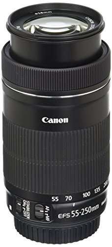 Canon-EF-S-55-250mm-F4-56-IS-STM-Lens-for-Canon-SLR-Cameras