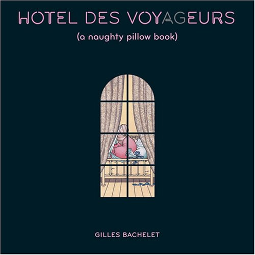 Hotel Des Voyageurs: A Naughty Pillow Book