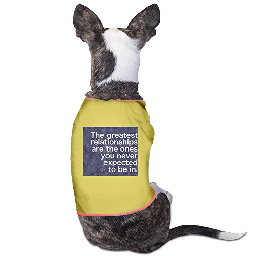 Custom Pet Clothing Quotes About Relationships For Dogs Cat 100% Polyester