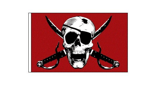 Flag Burley - 6 ft. Red Pirate Skull Bicycle Safety Flag with Rear Axle Mounting Bracket