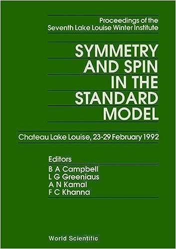 Descargar Libro Spin And Symmetry In The Standard Model Archivos PDF