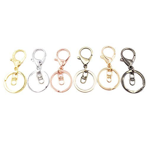 (Dcatcher 6 Assorted Colours Metal Snap Hook Lobster Clasps Lanyard with Keyring for Keychain DIY Bags, Pack of 6)