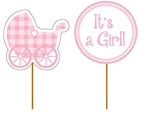 Creative Converting 93229 12 Count Baby Girl Gingham Decorative Cupcake Picks, Pink