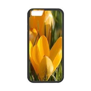 IPhone 6 Plus Case Yellow Crocus Design for Men, Case Iphone 6 Plus Case Design for Men [Black]