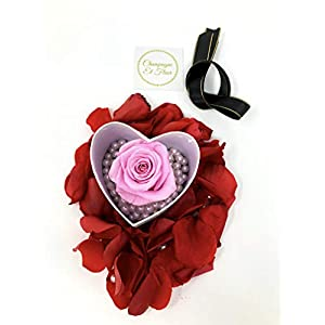 Champagne Et Fleur Real Forever Flower Preserved Rose in a Heart Shape Gift Box with Underlying Pearls- Best Valentines Gift for Her (Pink) 103