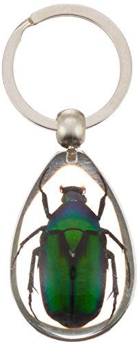 REALBUG Green Chafer Beetle Key Chain Tear Drop Clear (Keychain Beetle Specimen)