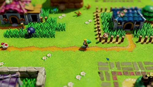 Legend of Zelda Links Awakening - Nintendo Switch Standard Edition [Importación inglesa]: Amazon.es: Videojuegos