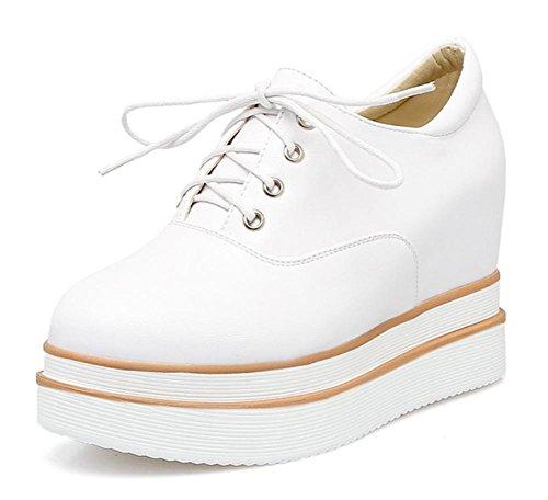 Ms Spring ascensor zapatos mollete escogen los zapatos los zapatos con cordones de las mujeres de fondo grueso , US9 / EU41 / UK7 / CN41