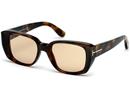 Light Frame Lenses Brown (Tom Ford Raphael Sunglasses (Dark Havana Frame/Light Brown Lens))