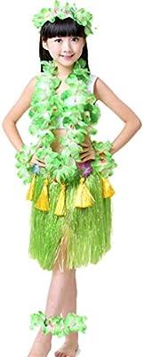 Haobing Disfraz Fiesta Hawaiana Falda Luau Hula Diadema Pulsera ...