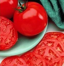 manalucie tomato - 7