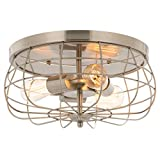 CO-Z 15 Inch Metal Cage Brushed Nickel Flush Mount Ceiling Light Fixture with 3 Lights, Industrial Vintage Ceiling Fixtures for Master Bedroom, Dining Room, Living Room, Farmhouse Lighting, ETL Listed