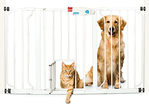 carlson-extra-wide-walk-through-gate-with-pet-door-29-to-44-inch