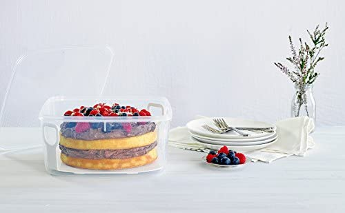 Amazon.com: DÉCOR 001800-004 Tellfresh - Elevador de tartas ...