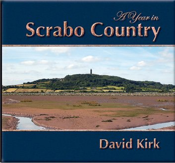 Download A Year in Scrabo Country PDF