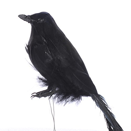 Pair of 2 Artificial Craft Feather Black Bird Crows for Halloween - The Crow Costume Tips