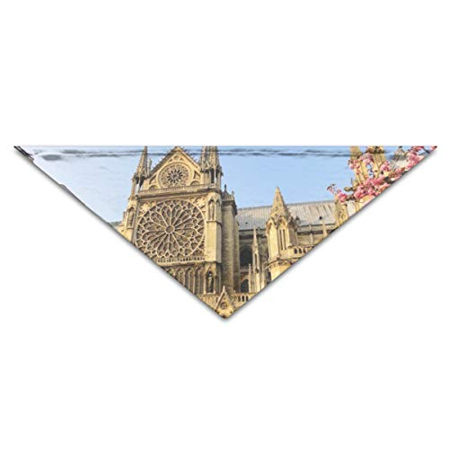 Xsdave Paris-Notre-Dame-de-Paris-House-of-Worship-Building 1 Soft Pet Washable Triangle Scarf for Small and Medium Sized Dogs, Puppies, Kittens, Rabbits