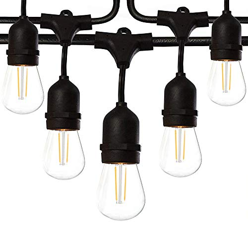 48 Ft LED Outdoor String Lights with 15 Lights (3 Extra S14 Bulbs) and 13 Foot Matching Extension Cord - Commercial Weatherproof Patio String (Patio Led Lights)
