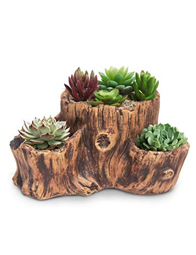 - Dahlia Driftwood Stump Log Concrete Planter/Succulent Pot/Plant Pot, 10L x 7.7W