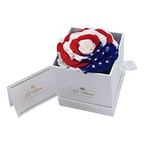 - American Flag 4th/Fourth of July Patriotic Decorations Preserved Rose, Real Flowers, Never Withered Roses | Natural Fragrance, Color, and Style Up to 1 Year | Gifts (Red, Blue, White Box)