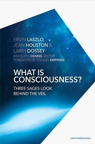 What is Consciousness?: Three Sages Look Behind the Veil (A New Paradigm Book)