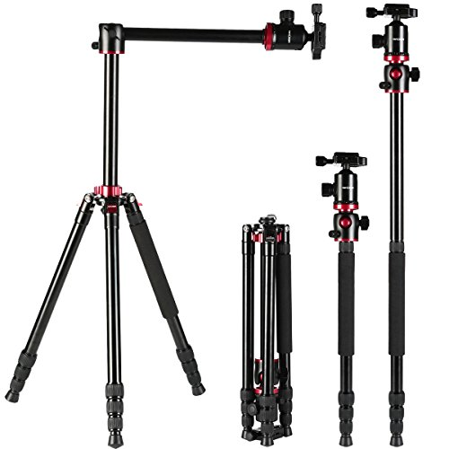 K&f Concept TM2534T Camera Tripod 66 Inch Portable Magnesium Aluminium Monopod 4 Section Professional Tripods With 360 Degree Ball Head Quick Release Plate for Canon Nikon Sony DSLR Cameras DV