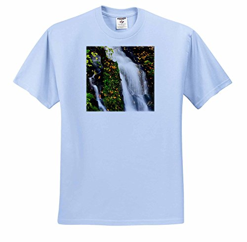 Danita Delimont - Autumn - North Carolina, Great Smoky Mountains National Park, Waterfall - T-Shirts - Youth Light-Blue-T-Shirt Large(14-16) (ts_231404_62)