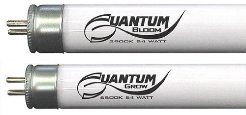 quantum 35 - 2
