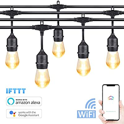 G'SOUL Smart WiFi Outdoor String Lights Waterproof Vintage Edison LED Bulbs Warm White 48ft 2W Bistro Lights Commercial Grade LED Market Lights Bulbs 15 x E26 Works with Google Home Alexa