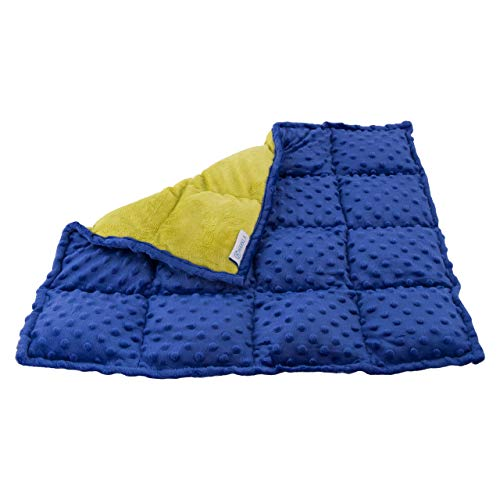 Sensory Weighted Lap Pad for Kids - 5-pounds - Great Lap Weighted Blanket for Children with Autism, ADHD, and Sensory Processing Disorder