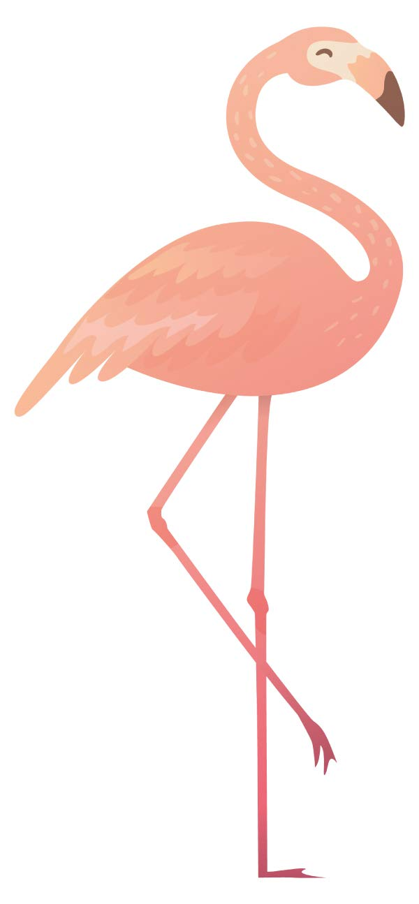 Wandtattoo Wandsticker Graziler Flamingo cooles Tiermotiv zum Kleben Vogelmotiv
