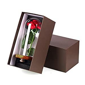 YSBER Beauty & The Beast Red Silk Rose and LED Light with Fallen Petals in Glass Dome on a Wooden Base 6