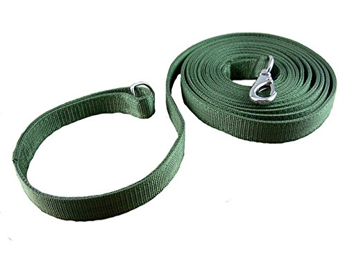 33.3FT OCSOSO Nylon Pet Lead Durable Classic Dog Cat Leash Green (33.3FT)