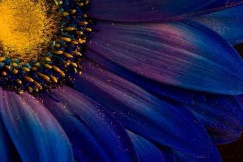 "Blue Rays by Thorsteinn H. Ingibergsson - 16"" x 24"" Giclee Canvas Art Print"