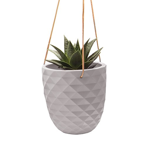 """Chive Thimble, Large 5"""" Succulent and Cactus Planter, Air Plant Holder, Hanging Ceramic Clay Plant Pot for Indoor House Plants (Grey)"""