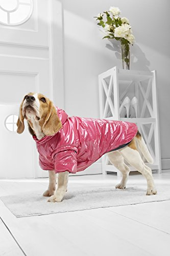Medium Dog Winter Jacket Vest For Beagle Poodle Cocker Spaniel Boston Terrier (Medium Plus Size, magenta, dark gray) - Frenchie Costume Plus Size