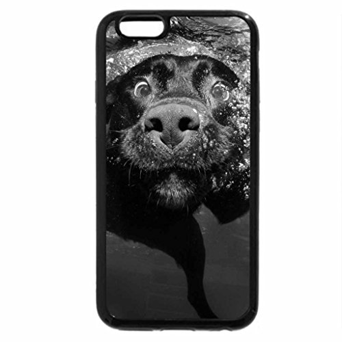 iPhone 6S Case, iPhone 6 Case (Black & White) - first swimming lesson dog